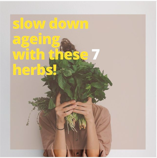 Slow down ageing with these 7 herbs.